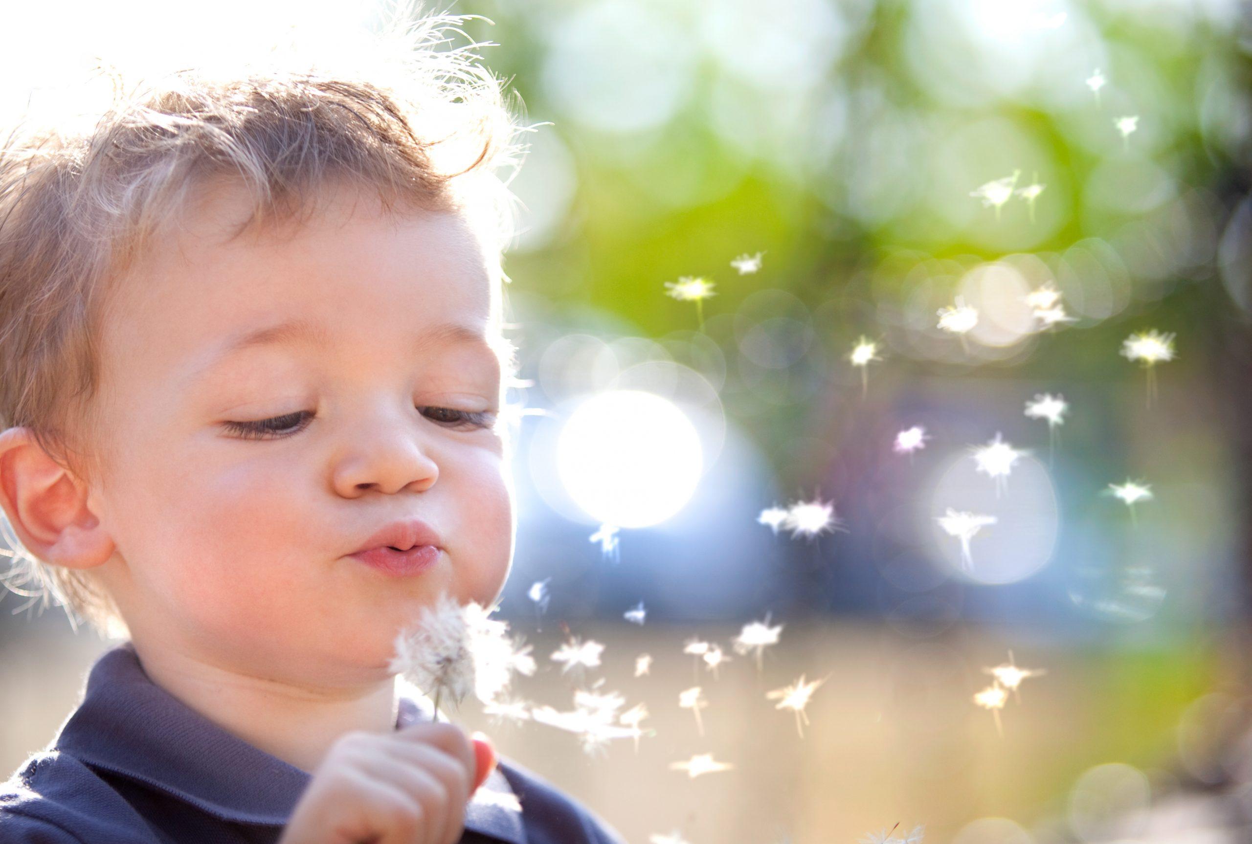 Curso Processamento Somatossensorial (tátil e proprioceptivo) em crianças Identificação, abordagem e estratégias de tratamento com Mary Hallway